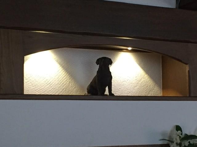 Akzentbeleuchtung mit Hundestatue