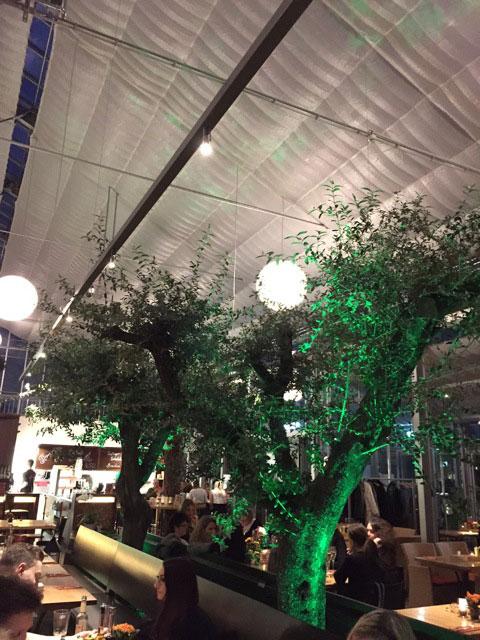 Leuchten mit grünem Ambiente